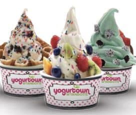 Yogurtown Wyandotte